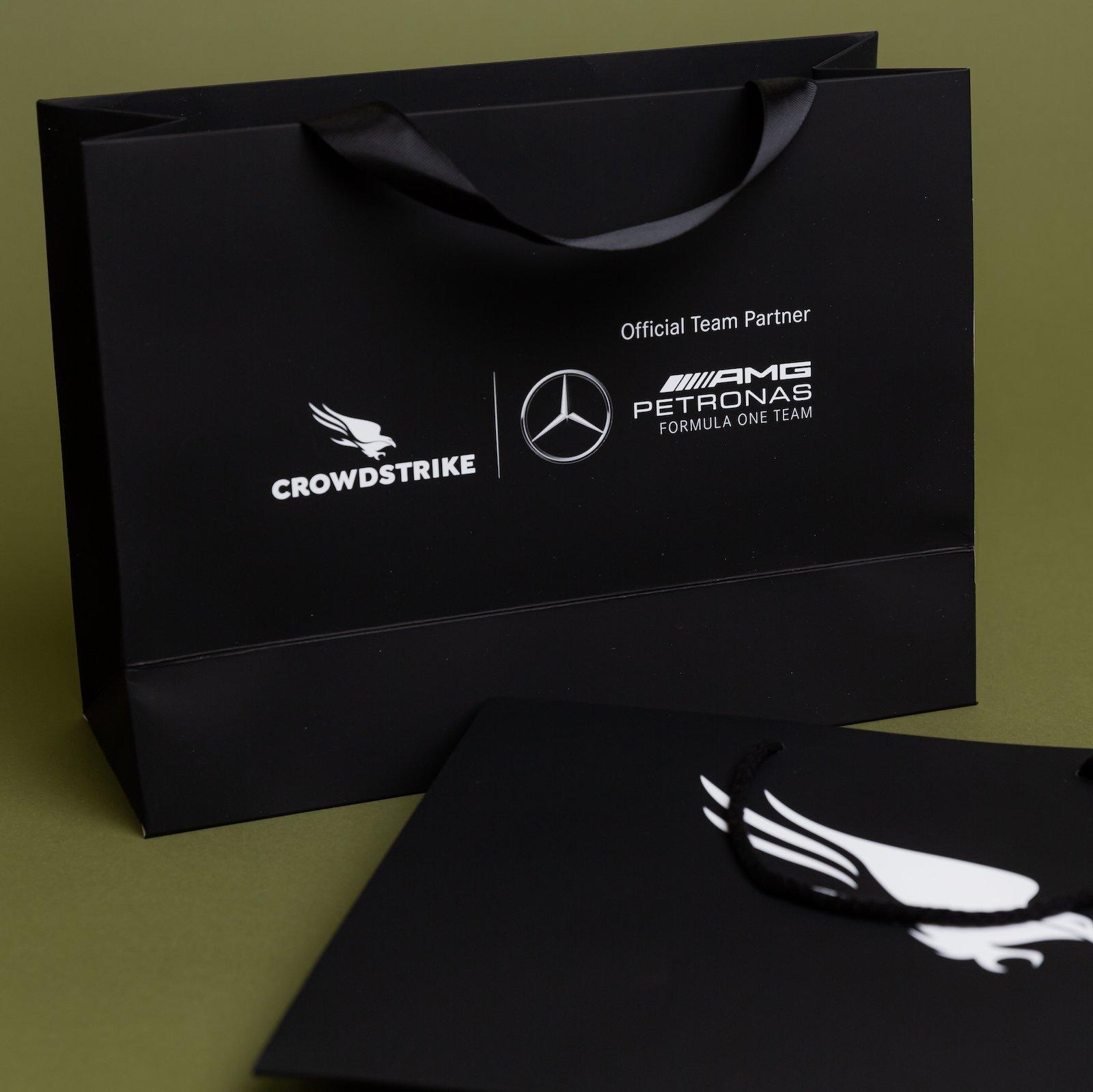 Laminated Paper Bag with ribbon handles